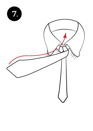 7th step when tying a full Windsor