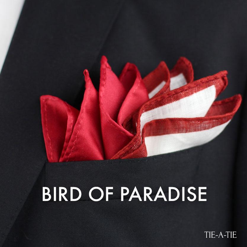 birdofparadise pocket square