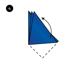 Shell Fold how to