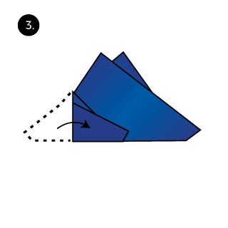 Two Tip Up Fold